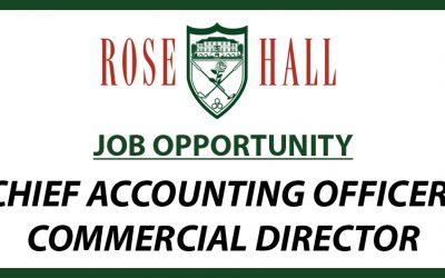 CHIEF ACCOUNTING OFFICER/COMMERCIAL DIRECTOR – JOB OPPORTUNITY